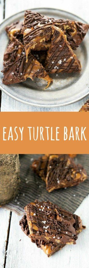 Chewy Turtle Bark